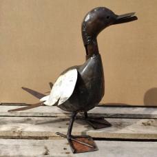 Medium duck