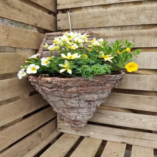 Hanging basket Half basket 30cm
