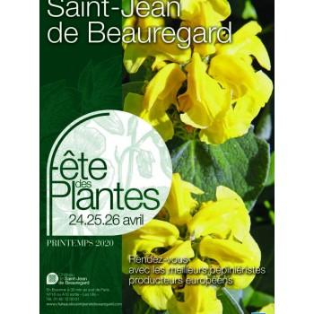 POSTPONED_Fête des Plantes du Château de Saint-Jean de Beauregard